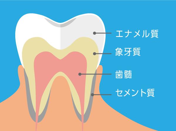 を 抜く の 神経 歯